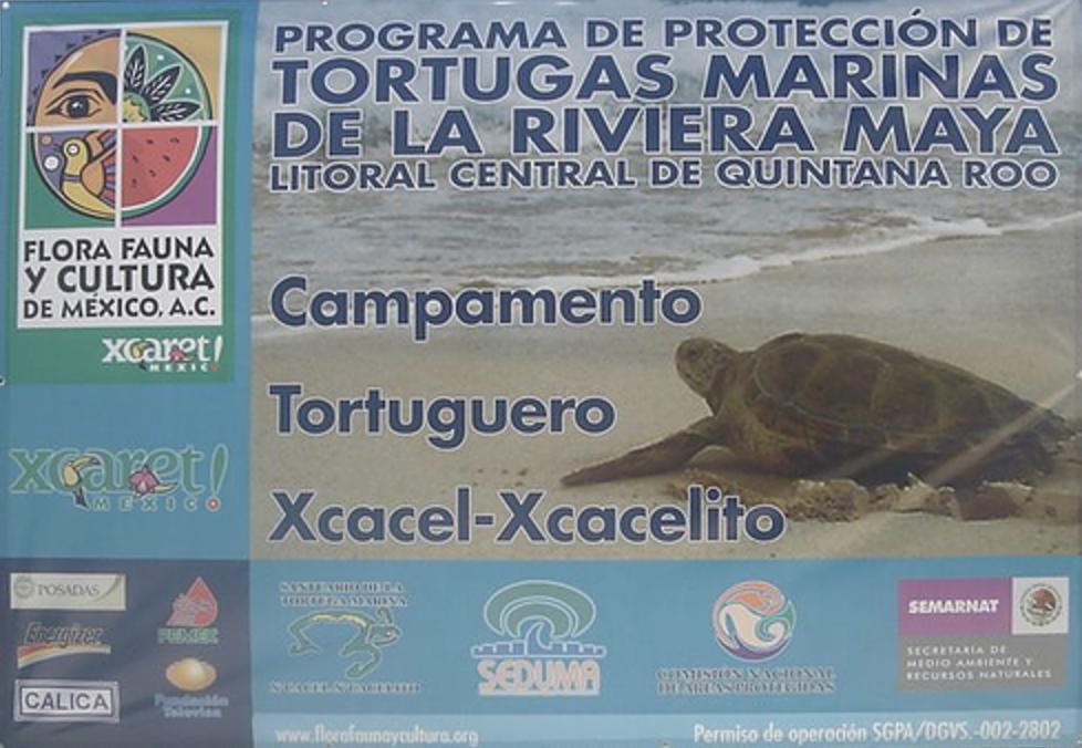 convenio-flora-y-fauna-fundacion-tulum-02